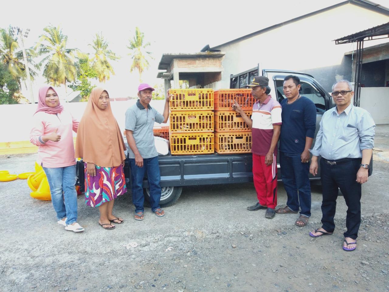Dosen Unibos Bantu Kembangkan Ternak Ayam Petelur Berbasis Rumahan